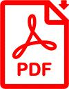 pdf_icon_audit